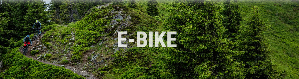 Electrice E-Bike